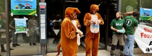 Apr+¿s leur entretien avec le directeur, les kangourous ressortent de la banque