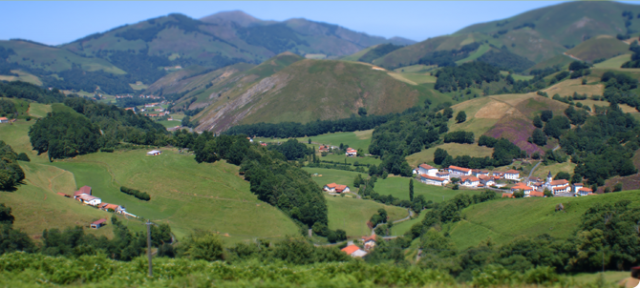 Lurzaindia1