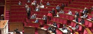 Une trentaine de députés, bretons, corses ou alsaciens pour la plupart, ont porté le débat sur les langues régionales à l'Assemblée nationale le mercredi 30 novembre au soir.