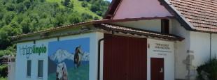 TRIGO LIMPIO (ZARAITZU, AEZKOA, ARTZIBAR, BAZTAN) Eskualdeko abeltzainek ekoitzitako haragi ekologikoa modu zuzenean saltzeko proiektua. Ariben haragia zatikatzeko gela bat eta bertantxe zuzenean saltzeko tokia egokitu, eta webgune bat sortu.
