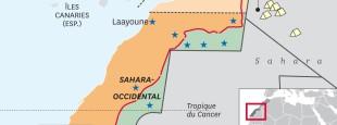 SaharaFP